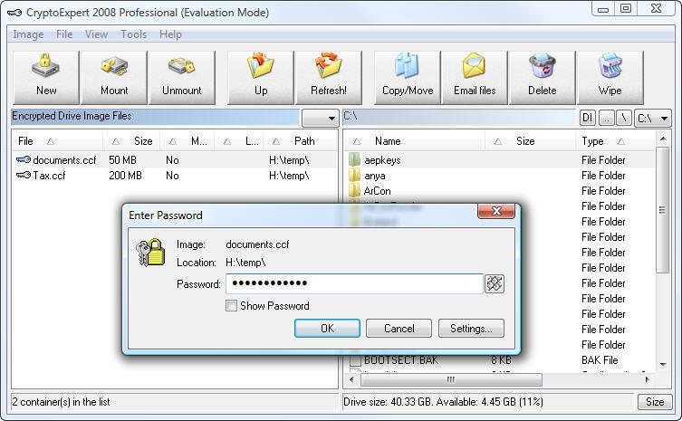CryptoExpert 2006 Professional